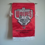 Wollongong Wolves